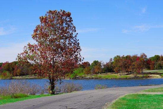 Heavener, OK: Efaula lake