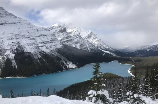 Peyto Lake Snowshoe Tour