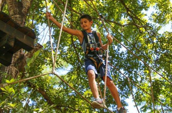 Baum-Top-Herausforderung