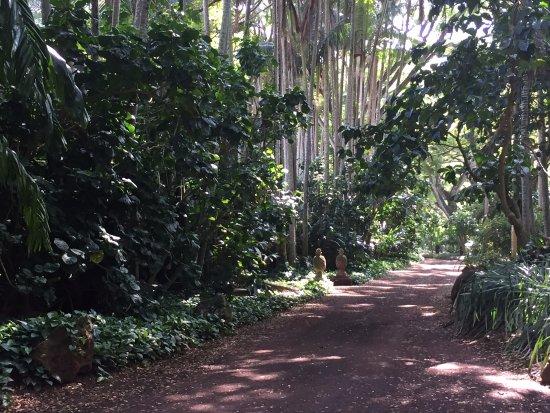 Allerton Garden: Pathway to the outdoor garden rooms