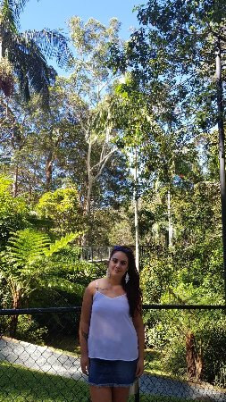 North Tamborine, Australia: 20171113_150838_large.jpg