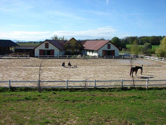Ptuj, Eslovenia: Facility