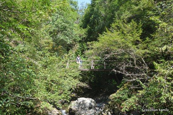 White River Eco Trail: White River Byala Reka - wooden bridges