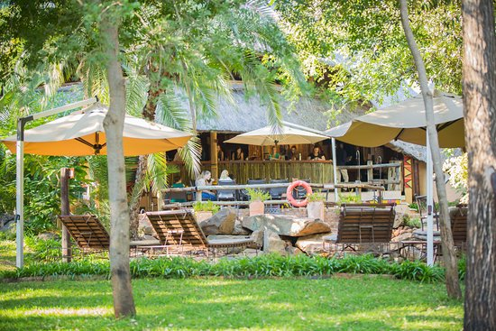 Lokuthula Lodges: Lokuthula pool area