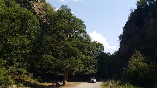 Kvabiskhevi, Gruzja: Borjomi-Kharagauli National Park, Khvabiskhevi 01