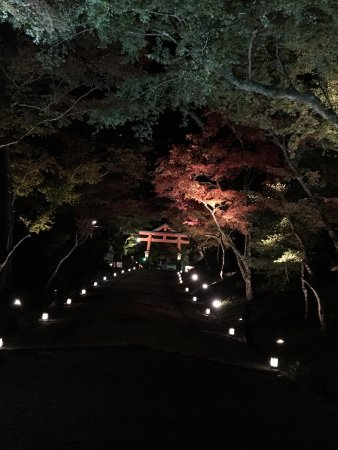 Hiyoshi Taisha: photo1.jpg