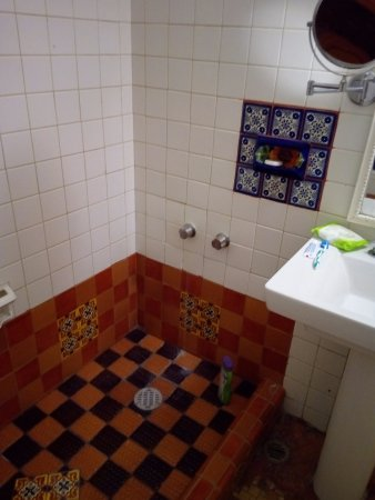 Posada Viena Hotel: quaint shower