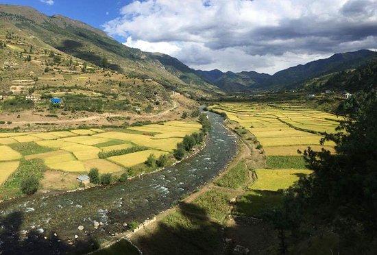 Himalayan Yatri Trekking