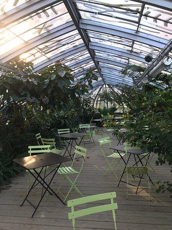 Jardin des Plantes : photo1.jpg