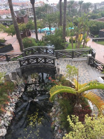 Great setting and grounds picture of melia jardines del for Jardines del teide costa adeje