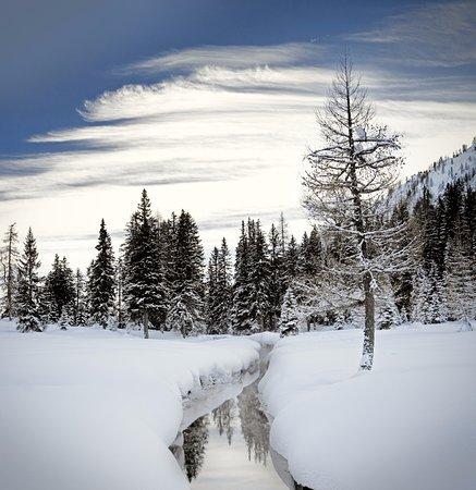 Spormaggiore, Italien: Nambino inverno
