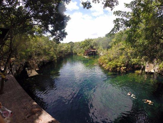 Cenote Jardin del Eden: La plateforme de plongeon
