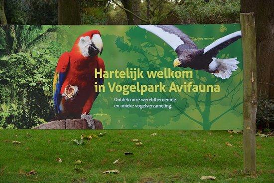 Фотография Alphen aan den Rijn