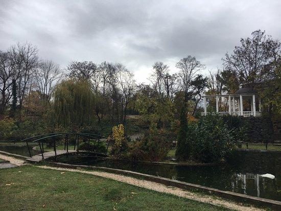 Salgirka City Park: Очень живописно.