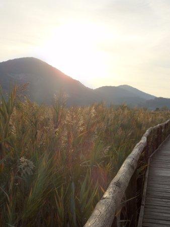 Massarosa, İtalya: oasi
