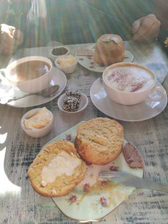 Coxwold, UK: Cheese/mustard/thyme scone & coffee