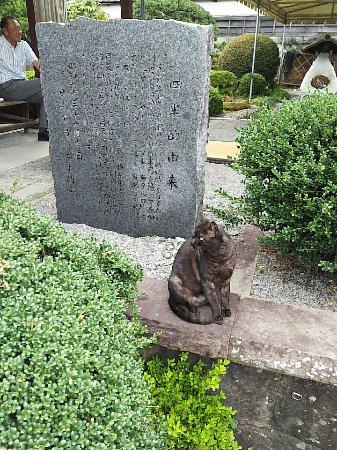 Nichinan, Japan: 1508042573322_large.jpg