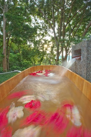 Langkawi District, Malaysia: Outdoor bathtub, Villa Kemoja