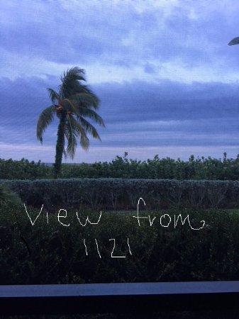 Sanibel Moorings Resort: This is the view from our patio at Sanibel Moorings, 1121. (view from patio)