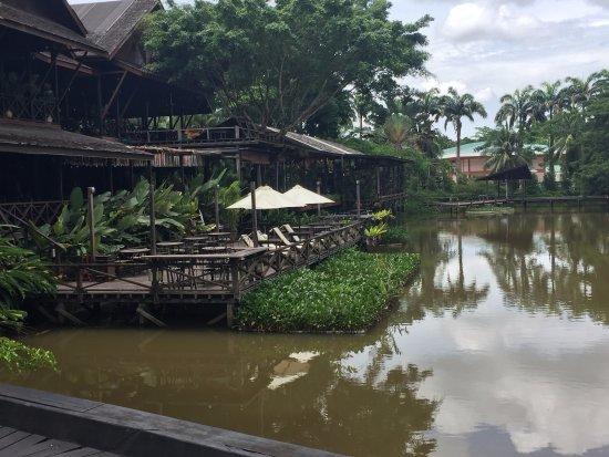Foto de Sepilok Jungle Resort