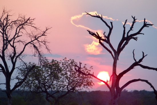 Timbavati Private Nature Reserve, South Africa: Sundowner drinks break! We loved amarula
