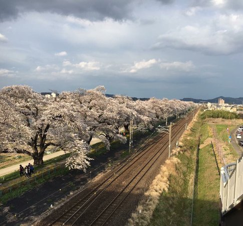 Shibata-machi, Japão: photo2.jpg