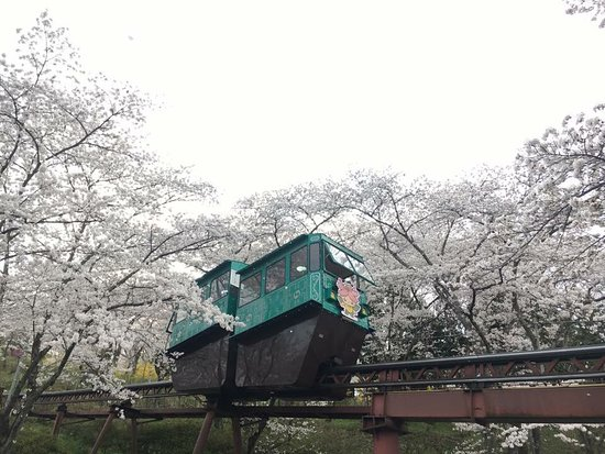Shibata-machi, Japão: photo3.jpg