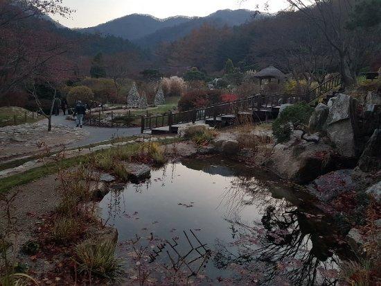 ซูวอน, เกาหลีใต้: 20171112_173140_large.jpg