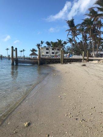 Pines and Palms Resort: Beautiful trip/eloping to Pines & Palms Resort in Islamorada, FL