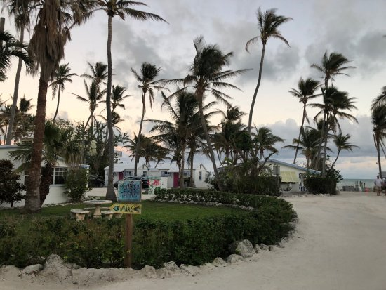 Pines and Palms Resort: Beautiful trip/eloping to Pines & Palms Resort in Islamorada, FL