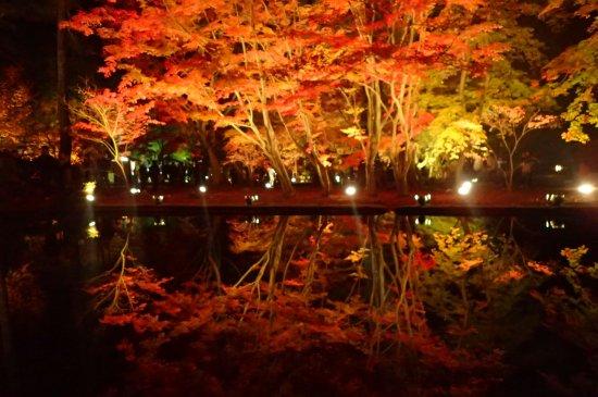 Sogi Park