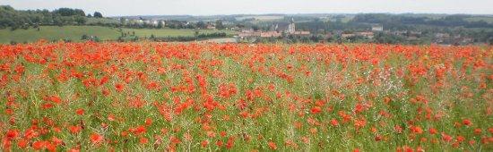 Arras, Frankrike: photo0.jpg