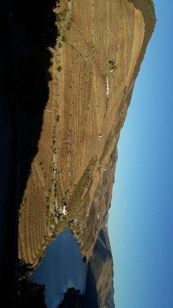 Sabrosa, Portugal: IMG-20171114-WA0052_large.jpg