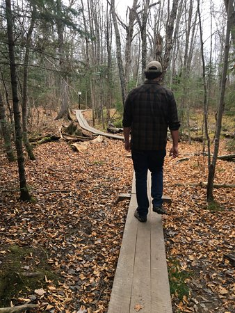 Ely, MN: Some boardwalks in place