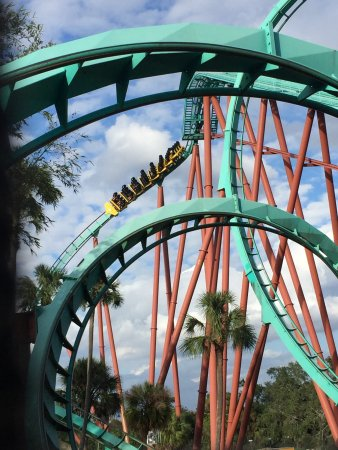 Picture Of Busch Gardens Tampa Tripadvisor