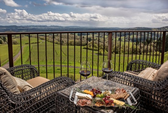 Youngberg Hill Vineyards & Inn: Martini Suite view!