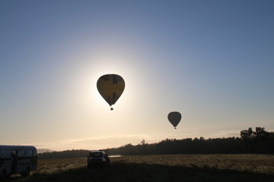 Pokolbin, Australia: View with other balloons over Hunter Valley