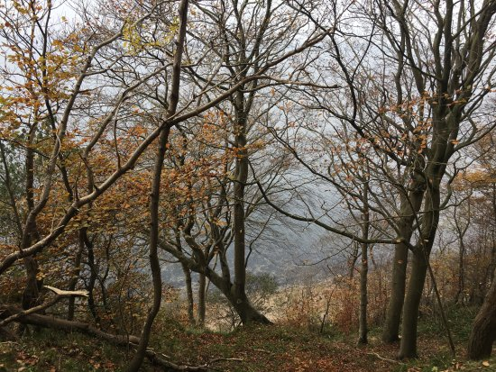 Gåtur langs skovstien mod Glücksburg