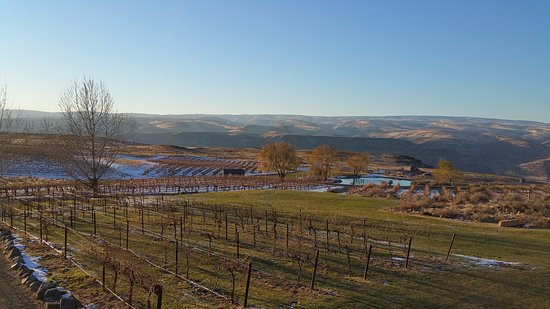 Quincy, WA: Winter view of Cave B Vineyards