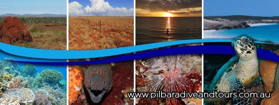 Karratha, Australia: Pilbara Dive and Tours