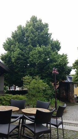 Wiesloch, Germania: Gartencafé