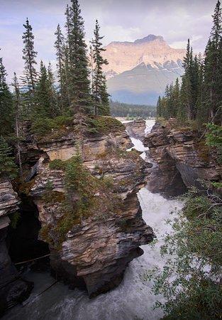 Athabasca Falls: The roaring falls