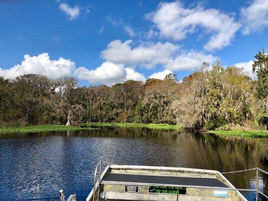 Lake Panasoffkee, Flórida: Swamp Fever Airboat Adventures