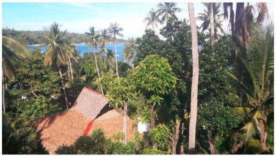 Coco Beach Island Resort 사진