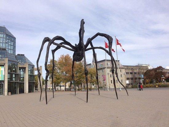 Ottawa, Canadá: Araña