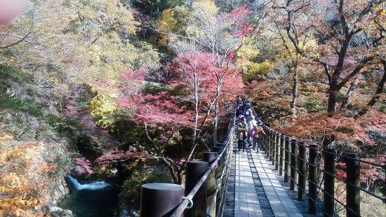 Takahagi