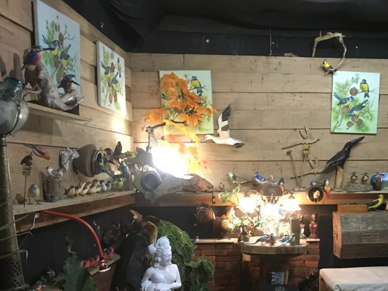 Singaraja, Indonesia: It's a small shop showing Some birds & paintings