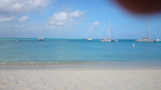 Nature S Discount Aruba Palm Beach