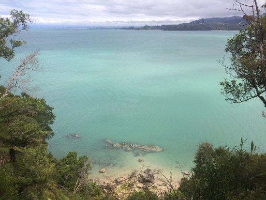 Abel Tasman National Park, Nuova Zelanda: photo6.jpg