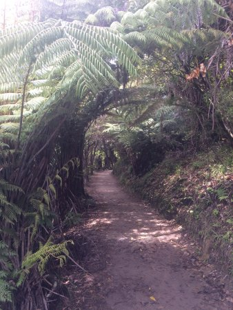 Abel Tasman National Park, Nuova Zelanda: photo7.jpg